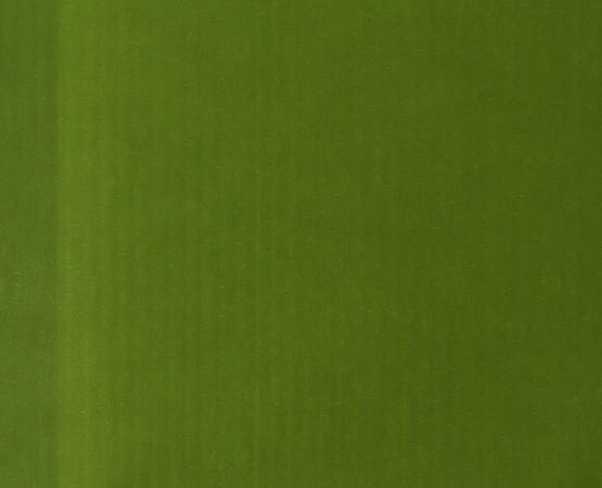 Papiertüten 120 x 180 mm grün/gelb - 100 Stück